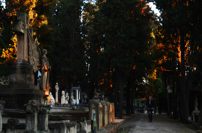 Cementiri de Montjuïc8