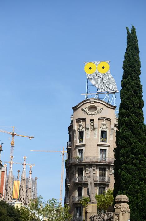 roura-owl-barcelona-with-sagrada-família