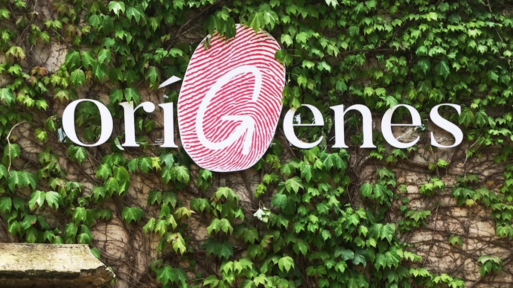 OríGenes Gastronomic Festival logo on ivy-covered wall